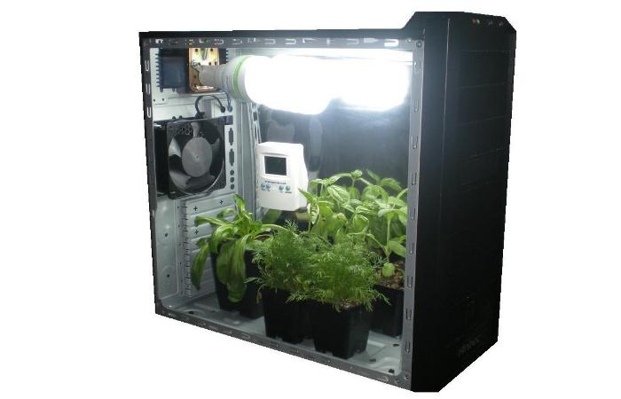 Гроубоксы для выращивания травы 489
