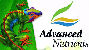 /blog/advanced-nutrients-obzor-produktsii/