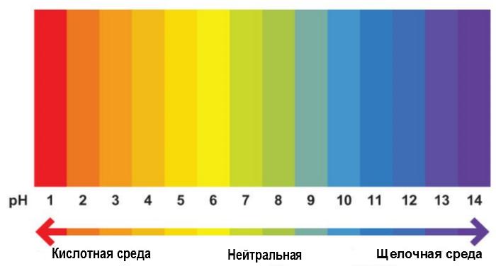 Шкала pH