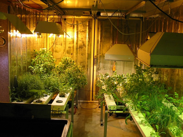 Growroom