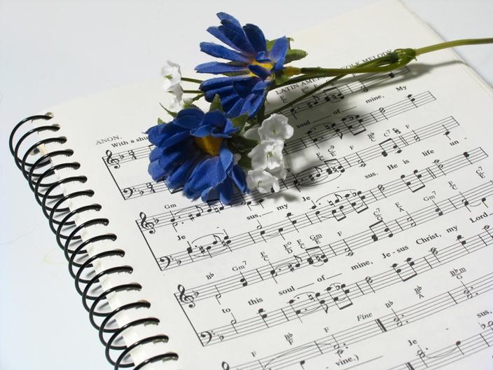 Влияние музыки на рост и развитие растений